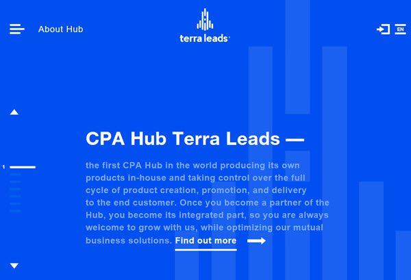 TerraLeads CPA hub
