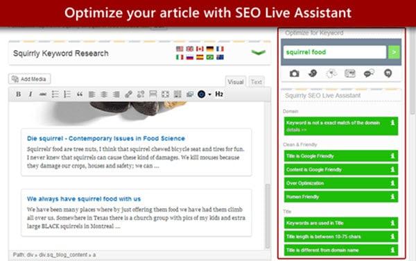 SEO SQUIRRLY WordPress SEO Plugins