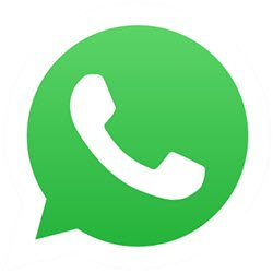Whatsapp Social Media App